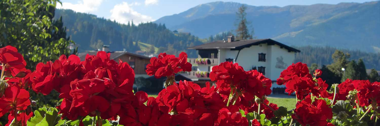 Willkommen im Herzen Tirols!