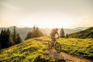 applisa_detail-p6p1369-bearbeitet-3ghost-bikes-gmbh